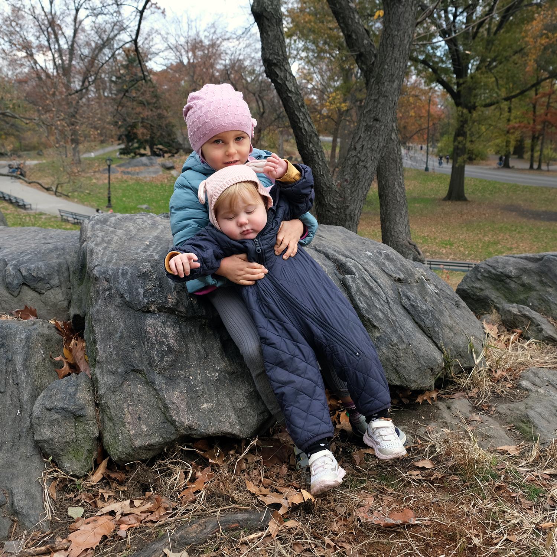 Central Park in November